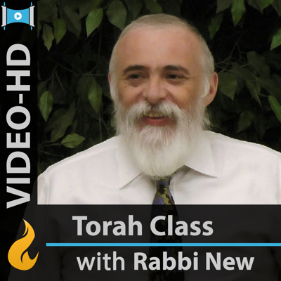 Commentaries on the Torah (Video-HIGH)