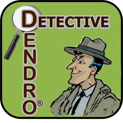"""Since its conception in 2004, Detective Dendro, the Diagnostic Sleuth, has been a highly popular print series with a regular feature in Arborist News magazine. In 2010, this educational and entertaining series became available as one of our ArborPod™ series. Join  Detective Dendro as he uses his professional knowledge of tree science, expert diagnostic skills, and gut instincts of a """"hard-boiled detective"""" to investigate and identify his clients' biotic and abiotic tree disorders. Assisted by his young apprentice, Codit, they inspect a wide range of mysterious tree afflictions, dispel the """"red herrings,"""" and uncover the signs and symptoms that lead them to accurately diagnose trees in a variety of exotic places. If  you have comments or a favorite topic in arboriculture that you would like to learn more about, please contact us at isa@isa-arbor.com."""