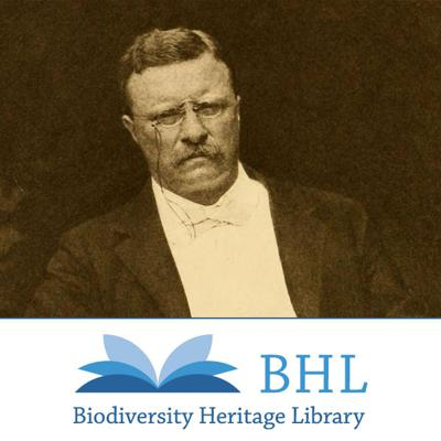 Theodore Roosevelt Collection