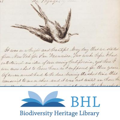 What do scientists do outside of the lab? To find out, dive into BHL's first collection of primary source material! Learn about the activities of 19th and early 20th century naturalists as they investigate wild areas throughout the United States and the Galapagos Islands. These field notes are part of the Connecting Content project; for more information: http://research.calacademy.org/library/fieldnotes.