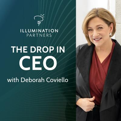 Cover art for The CEO's Compass: How to V.A.U.L.T Your Team into Leadership Roles