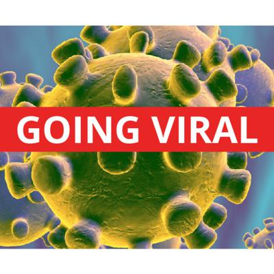 Cover art for Viruses are Created by Nature, Pandemics are Created by Politicians