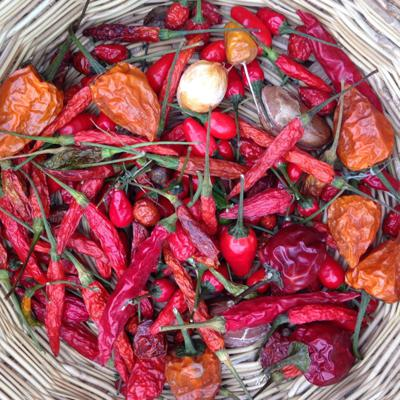 Cover art for So Hot Right Now: Why We Love the Chile Pepper