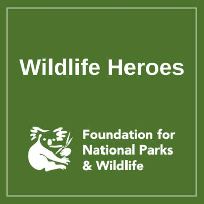 Wildlife Heroes: Caring for Carers Podcast