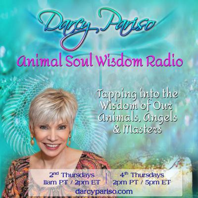 Animal Soul Wisdom Radio with Darcy Pariso: Tapping into the Wisdom of Our Animals, Angels, & Masters