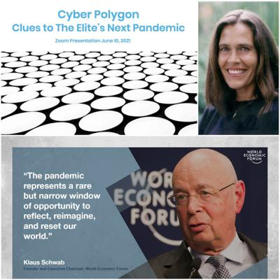 Cover art for Episode 405: Cyber Polygon and The Great Reset: A Conversation with Cat McGuire