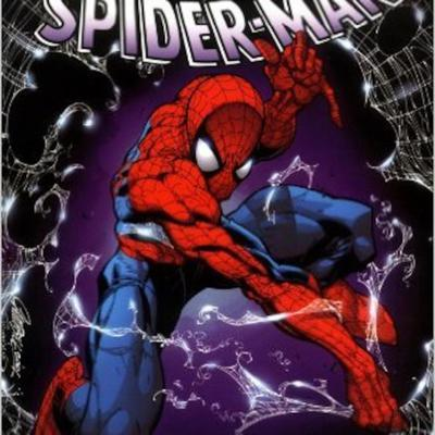 Cover art for Nerd Swap episode 13: Spider-man: Coming Home