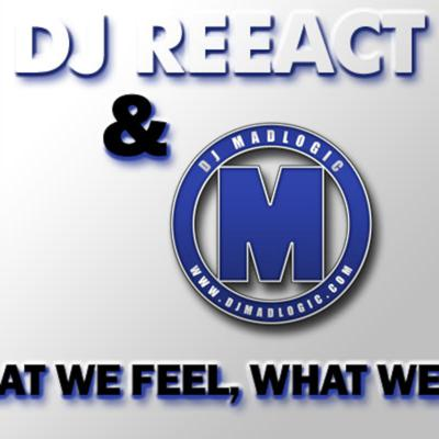 Cover art for DJ MadLogic presents What we feel, What we do Vol. 4