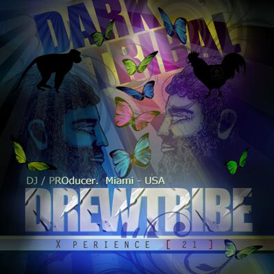 Cover art for THE DREWTRIBE X-PERIENCE 21