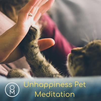 Cover art for Unhappiness Pet Meditation