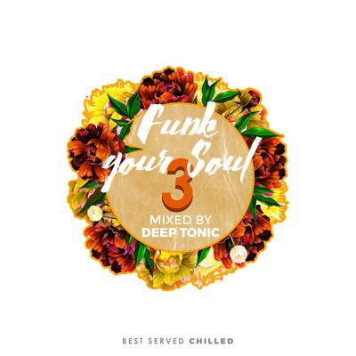 Cover art for Funk Your Soul 3