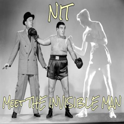 Cover art for S2.4 NIT Meet The Invisible Man