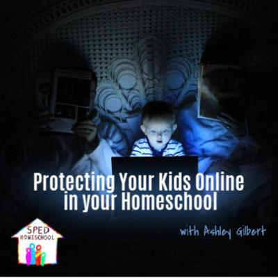 Cover art for Protecting Your Kids Online in your Homeschool