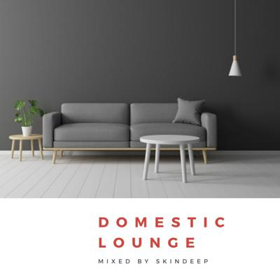 Cover art for Domestic Lounge Mixed By Skindeep