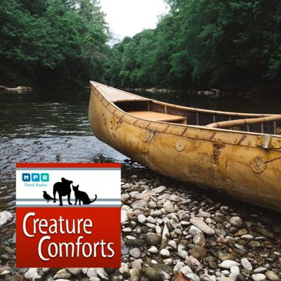 Cover art for Creature Comforts | Canoeing The Mississippi