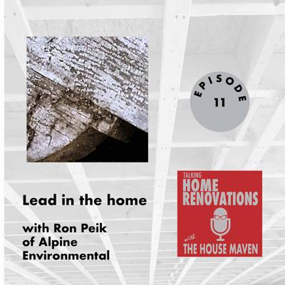 Cover art for Lead in the home
