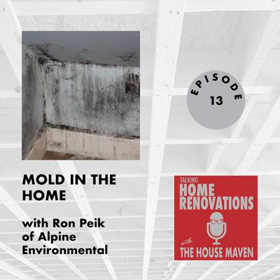 Cover art for Mold in the home