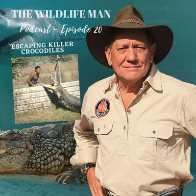 Cover art for The Wildlife Man Podcast - Episode 20 - Escaping Killer Crocodiles