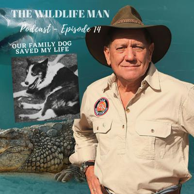 Cover art for The Wildlife Man Podcast - Episode 14 - Our Family Dog Saved my Life