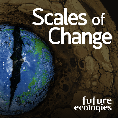 Scales of Change