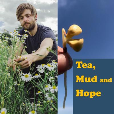 Cover art for Tea chat during lockdown with the wonderful Alex Simpson