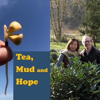 Cover art for Tea growing across Europe with special guest Denis Mazerolle