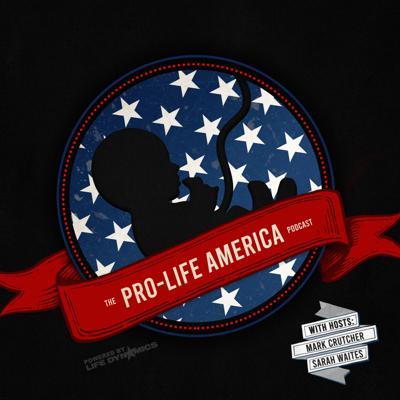Cover art for Episode 5   Is The Pro-Life Movement Committing Suicide?