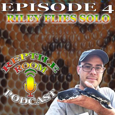 Cover art for Episode 4: Riley Flies Solo