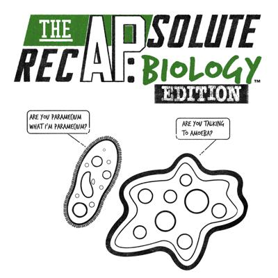 The APsolute RecAP: Biology Edition, hosted by Melanie Kingett, will be your guide to scoring the five! The APsolute RecAP is designed to maximize your understanding and minimize your need for memorization. Each episode will review content, skills and test taking tips to help you succeed in May.  (AP is a registered trademark of the College Board and is not affiliated with The APsolute RecAP. Copyright 2020 - The APsolute RecAP, LLC. All rights reserved.)
