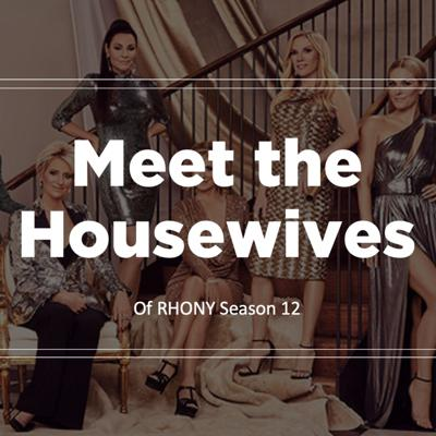 Cover art for RHONY: Meet the Housewives