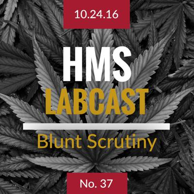 Cover art for Blunt Scrutiny
