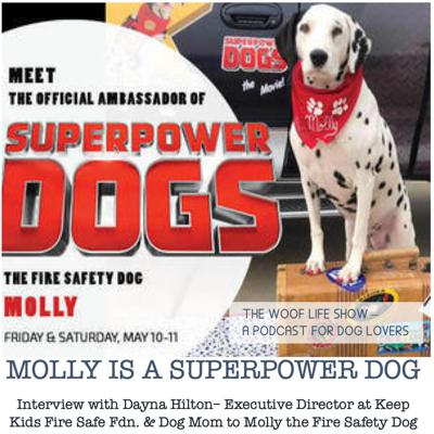 Cover art for BONUS EPISODE - Molly is a Superpower Dog - Interview with Dayna Hilton– Executive Director at Keep Kids Fire Safe Fdn. & Dog Mom to Molly the Fire Safety Dog