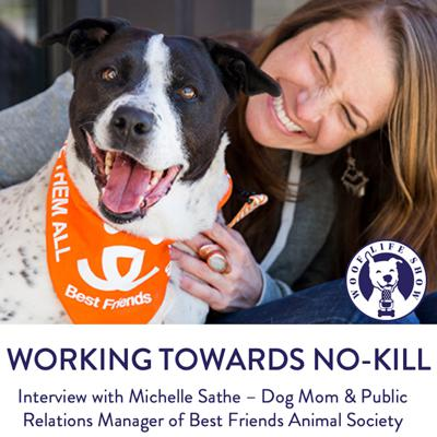 Cover art for Working Towards No-Kill - Interview with Michelle Sathe – Dog Mom & Public Relations Manager of Best Friends Animal Society