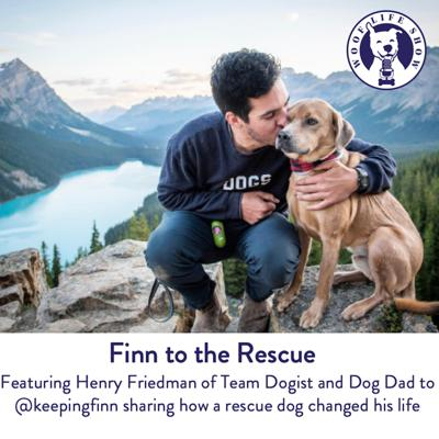 Cover art for Finn to the Rescue - Featuring Henry Friedman of Team Dogist and Dog Dad to @keepingfinn sharing how a rescue dog changed his life