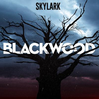 Five years ago, Molly Weaver, Bryan Anderson, and Nathan Howell started a podcast focused on the local legend of a monster called The Blackwood Bugman. Quickly, the investigation grows out of their control, as they discover that, not only are the legends seemingly true, many people in Blackwood have turned up dead or disappeared without a trace. Worse, there may be a reason why no one has ever uncovered the truth before. Someone is watching them, willing to do whatever it takes to keep the secret. Their recordings have finally been released.