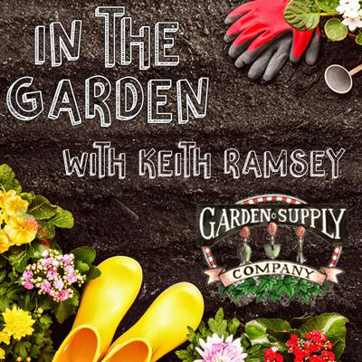 In the Garden with Keith Ramsey is a podcast aimed at helping you grow and maintain a beautiful and healthy garden and landscape.  Each podcast will focus on a new specific topic. Check back every two weeks for the latest episode!