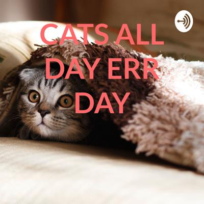CATS ALL DAY ERR DAY