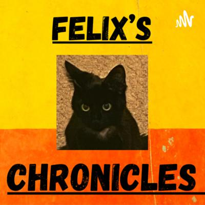 Hey guys! My name is Richard and This podcast is going to be about sickly kitten named Felix. Who is suffering with fiv disease. His mischief and funny stories as well as his ups und downs. And his relatively unknown disease and its treatment. So please tune in and enjoy felix's stories.