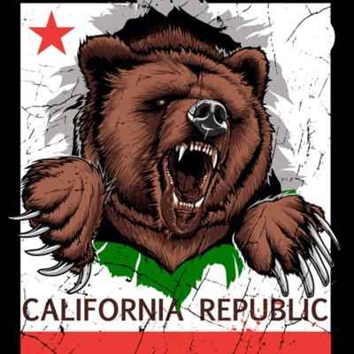 Whether you're a conservative, libertarian, moderate Democrat, or just someone with common sense, the California Underground is dedicated to pushing back on the extreme left that has overrun our state. We talk California politics and some national politics and how we can stop extreme leftists from ruining our beautiful state.