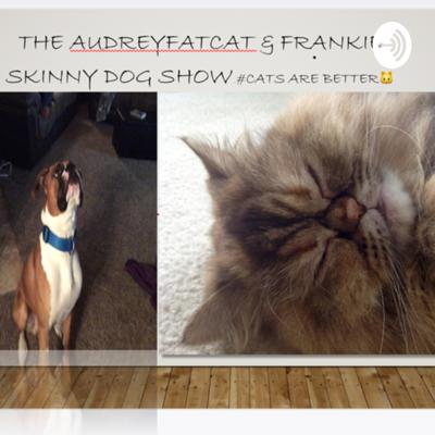 Audrey Fat Cat and Frankie Skinny Dog Show