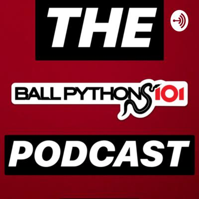 BALL PYTHONS 101 Podcast
