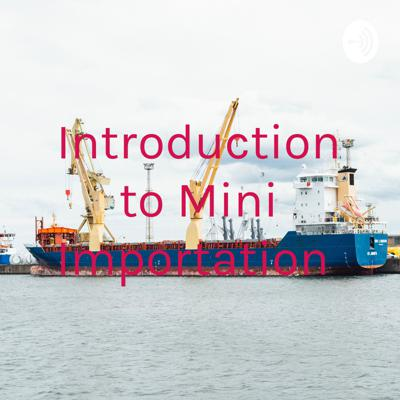 Introduction to Mini Importation