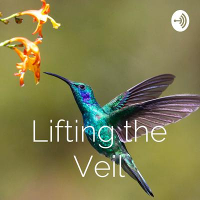 """Our natural state is love, joy, health and abundance. Anything outside of that shows we are out of alignment. Lifting the Veil discusses how to lift these """"veils"""" that separate us from our true self. It's not about becoming anyone - it's undoing who we are not."""