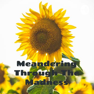 Meandering Through The Madness: An Ordinary Person's Spiritual Journey