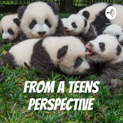 From A Teens Perspective