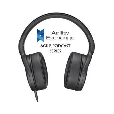 Agility Exchange brings you the podcast covers our conversations with the industry practitioners and people with a wealth of experience and knowledge of Agile implementations and practices.  I am your host Shailendra Malik, and I have more than 15 years of industry experience a decade of which is of Project management covering traditional and Agile projects alike.   Disclaimer: Though I am currently an employee of DBS Bank, Singapore, this podcast bears no influence of DBS Bank on content and views mentioned by me or by the guests are our personal views.