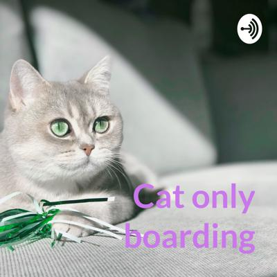Cat only boarding - is it right for my ca