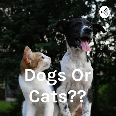Dogs Or Cats??