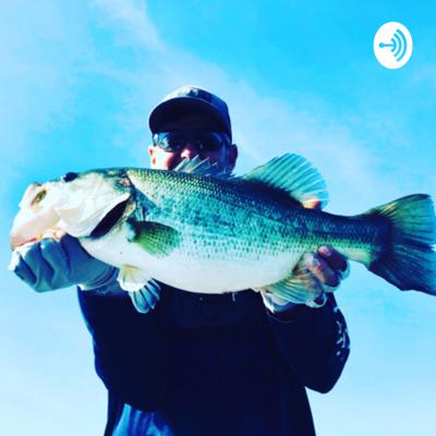 """If you're a """"largemouth lover"""" and want to find out everything you need to know to be successful out on the water, kick your feet up and enjoy the latest news from the greatest fishing resources available."""