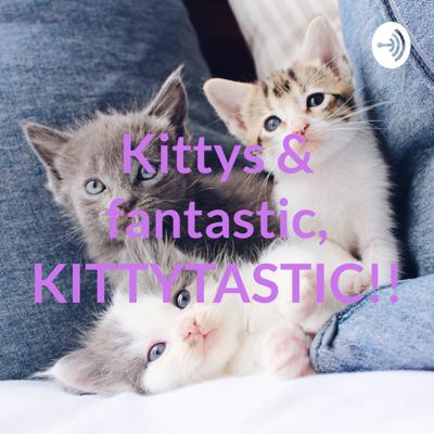 Kittys & fantastic, KITTYTASTIC!!